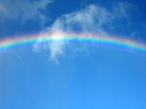Rainbow0901_800